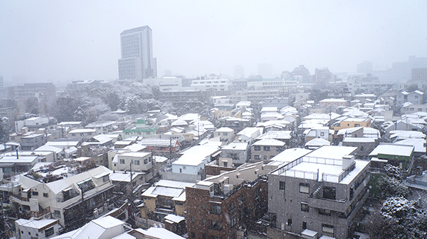2014-snow-city