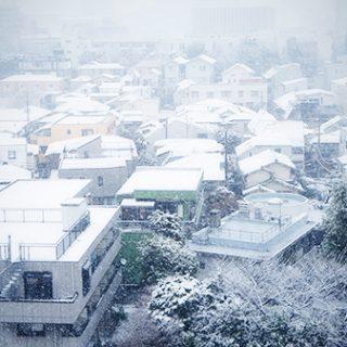 【雑記】首都圏で10年に一度の大雪って言われた翌週がそれを上回ったのはなんて呼べばいいですか