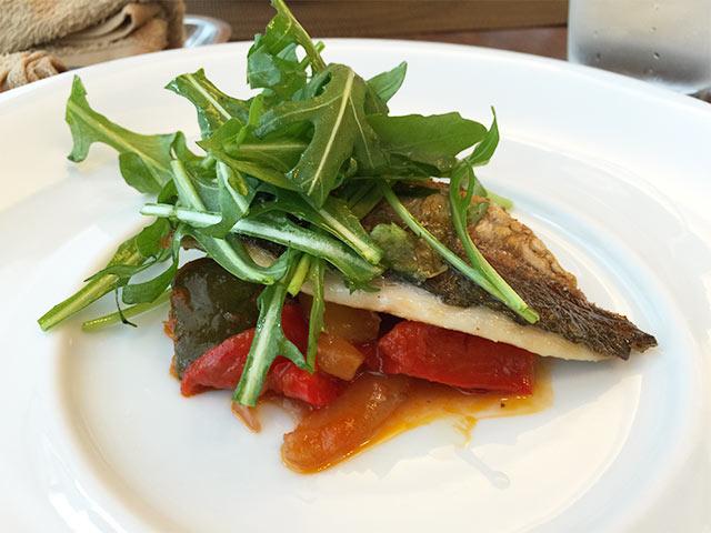 musashikoyama-carina-fish