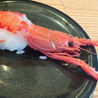 【18切符旅2】沼津水族館隣接の「活けいけ丸」は深海魚が食べられる回転寿司!