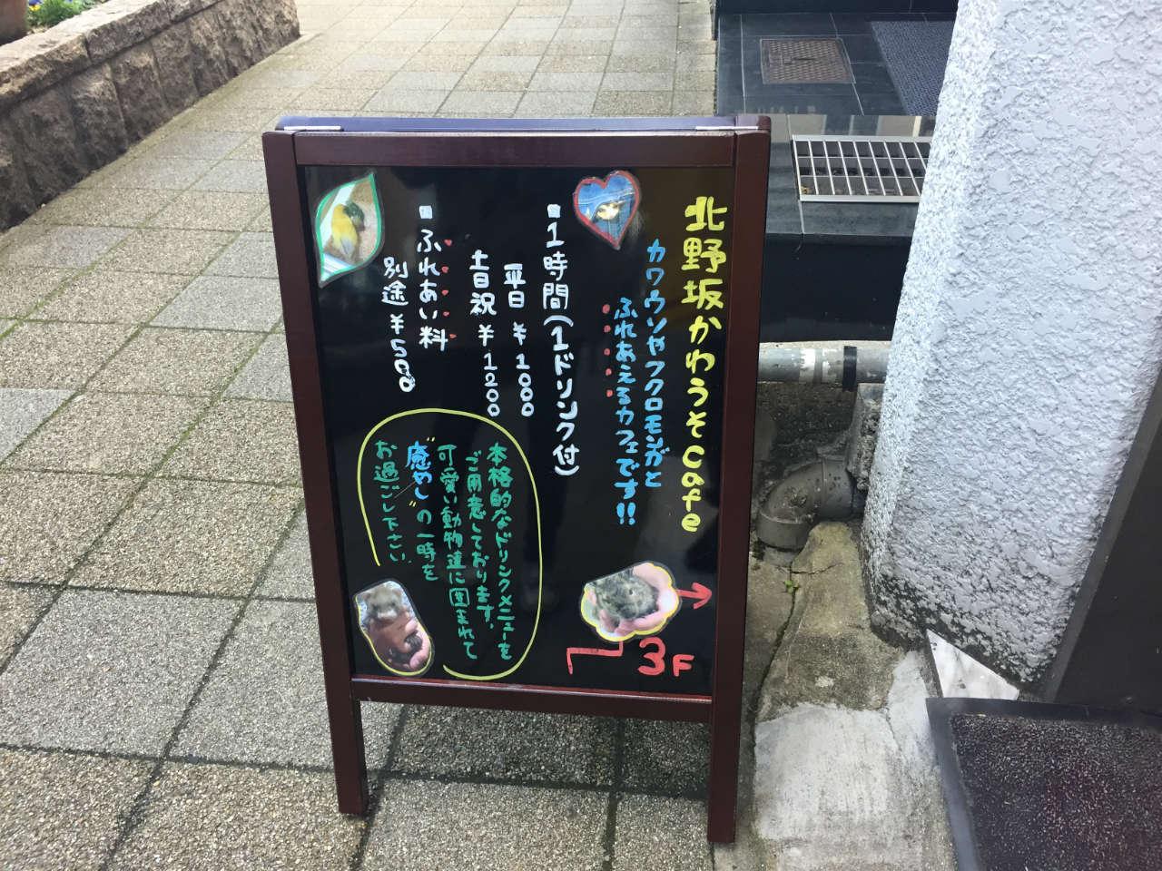 kobe_kawauso1