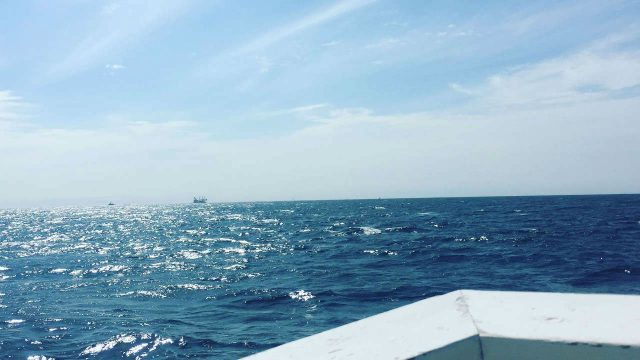 【初夏の南房総ツアー3】初めての海釣りでイサキ大漁⁉︎ でも、リベンジを誓う…!