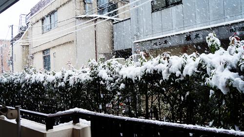 First snow 2013 02