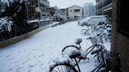 First snow 2013 04