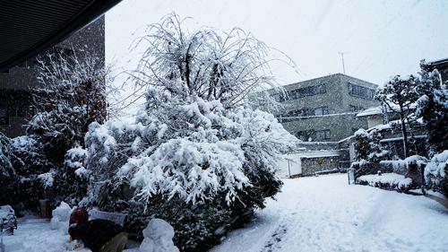 First snow 2013 05
