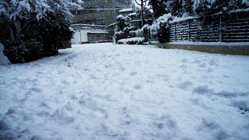 First snow 2013 06