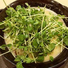 池袋にある鶏白湯のラーメン屋「壽(ことぶき)」の豆苗そばがうまい!