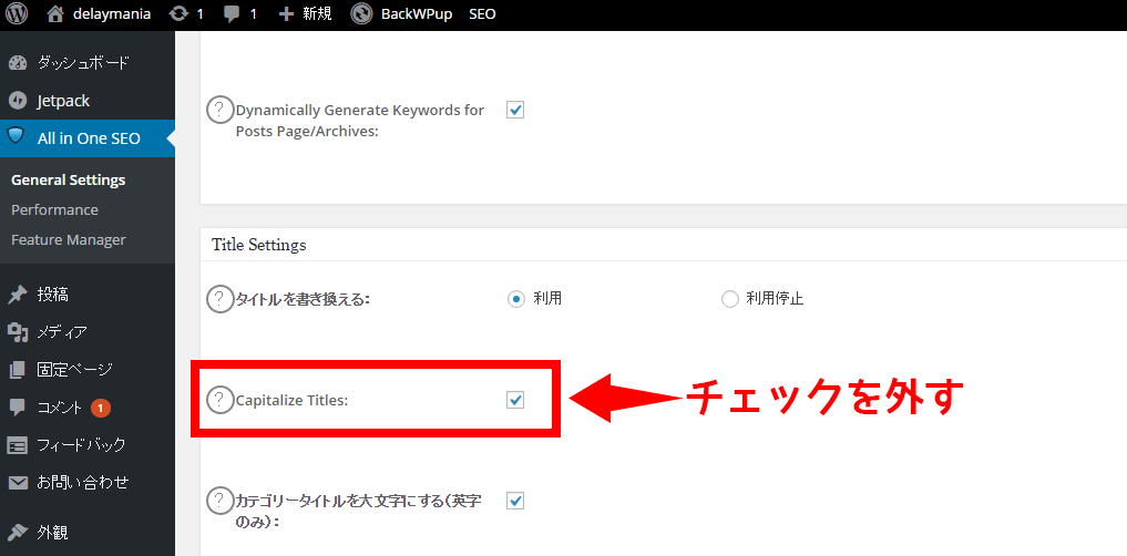 All in One SEO PackのCapitalize Titles設定項目