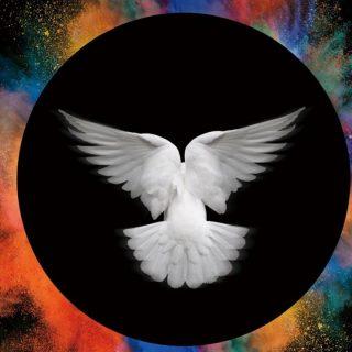 関連記事『A9(アリスナイン)の2nd EP「LIGHT AND DARKNESS」がいい感じ!』のサムネイル画像