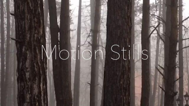 iPhoneのLive PhotosをGIFアニメにできるアプリ「Motion Stills」がいい感じ!