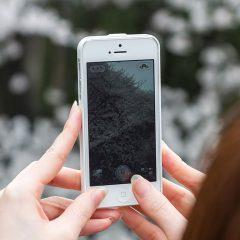 関連記事『スマホで撮った写真はGoogleフォトを開くだけでバックアップが取れる!』のサムネイル画像