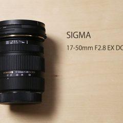 SIGMAのAPS-C専用標準ズームレンズが安い割に使い勝手良くていい感じ
