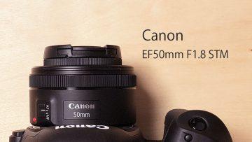 Canonの撒き餌レンズ「EF50mm F1.8 STM」が1万円台と思えないコスパの良いレンズ!初めてのレンズに最適!