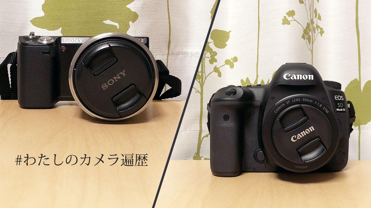 フルサイズのカメラを買うまでのカメラ遍歴 #わたしのカメラ遍歴