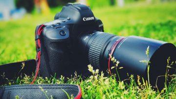 どうせカメラにハマるなら最初からフルサイズの一眼レフカメラを買っておけばよかった