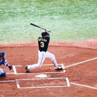 初めて野球観戦しに行った阪神vs横浜が20対4と点数入りまくって大山の記録とか出てすごかった