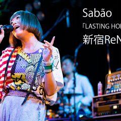 関連記事『Sabão(シャボン)ツアーファイナル@新宿ReNYでヒスブル時代から20年の活動に一区切り』のサムネイル画像
