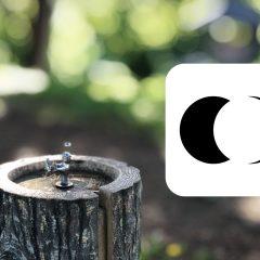 写真アプリ「Focus」で背景ボケを調整できるのが便利!
