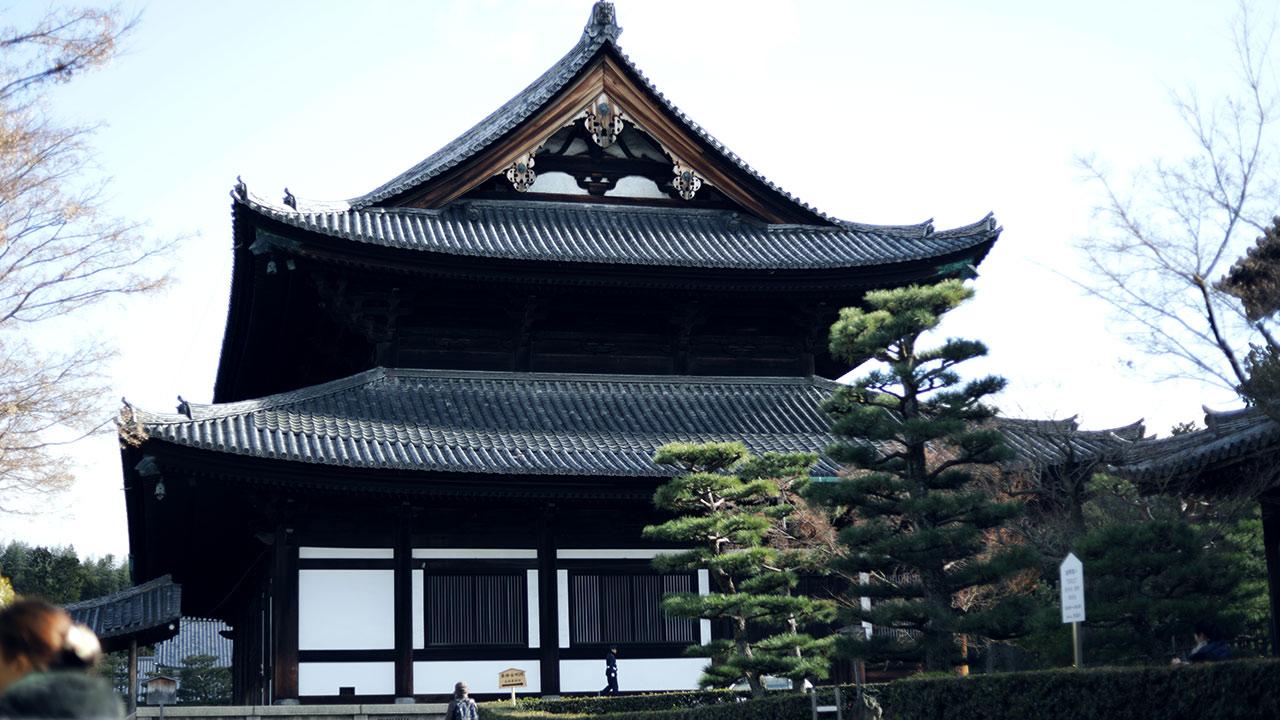 東福寺の本堂がでかくてすごい!景色も絶景なので紅葉の時期にまた来たいお寺!