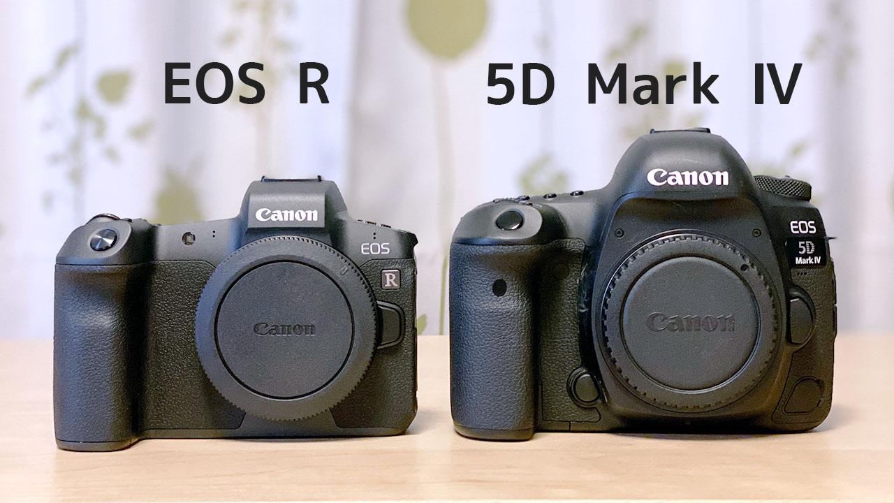 EOS Rと5D4の大きさ比較
