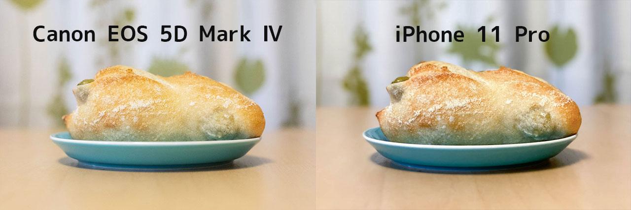iPhone 11 Proと一眼レフカメラの写真比較