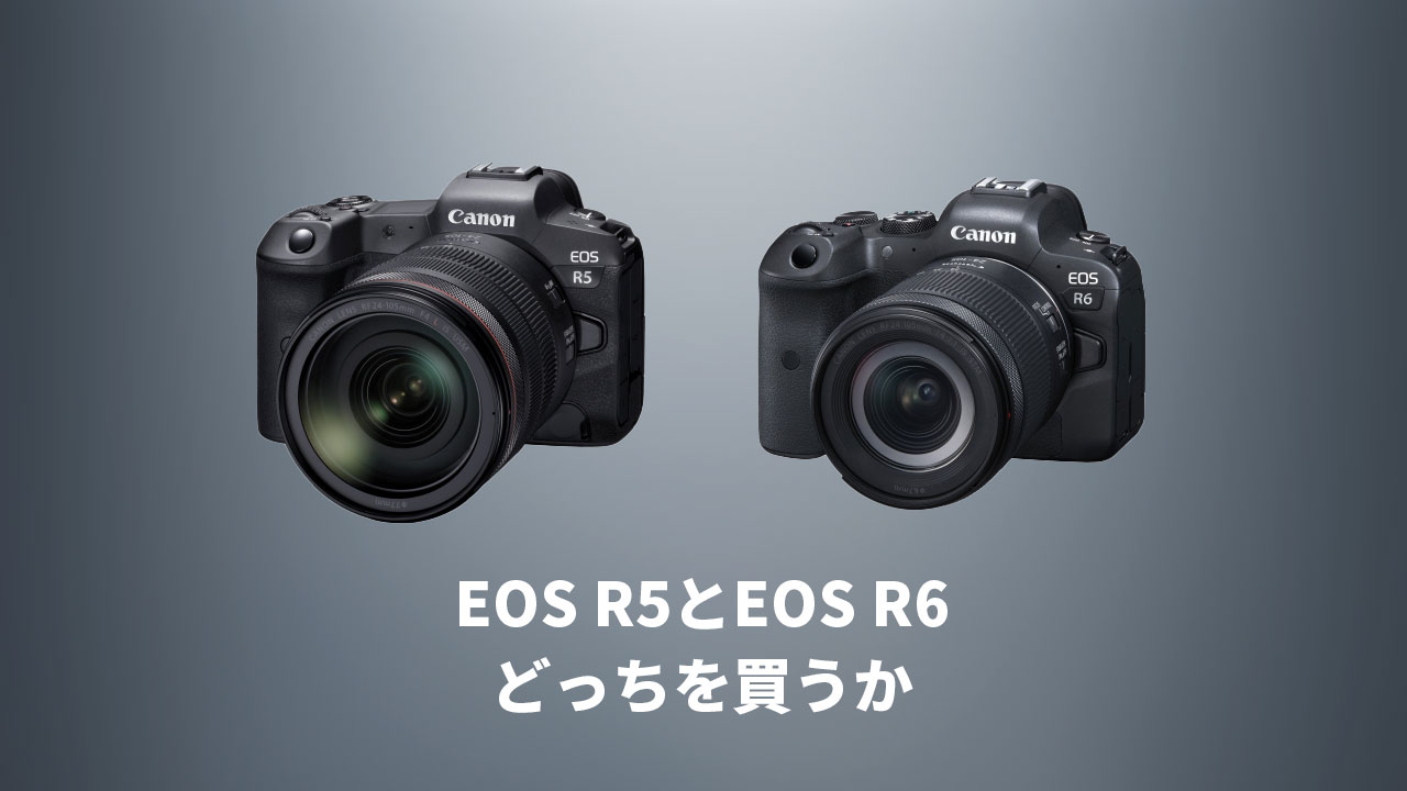 5D Mark ⅣとEOS RのユーザーがEOS R5とEOS R6のどっちを買うのが良いか考えてみた