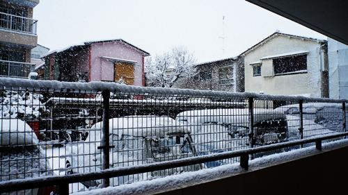 First snow 2013 03