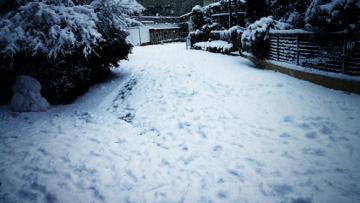2013年成人の日に初雪!神奈川県でこんなに降ったらパニックになるっていうレベルの大雪