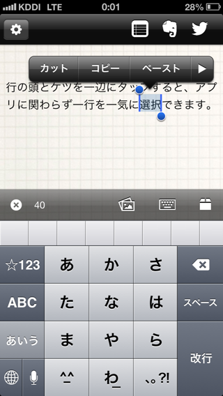Iphone text selection02
