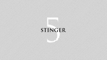 STINGER5を使って僕が最初にカスタマイズした箇所まとめ
